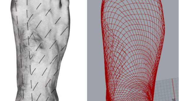 Foot skin tension lines, Ourownskin framework, mesh